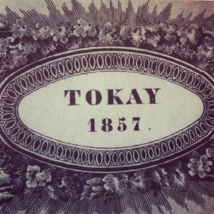 tokay1